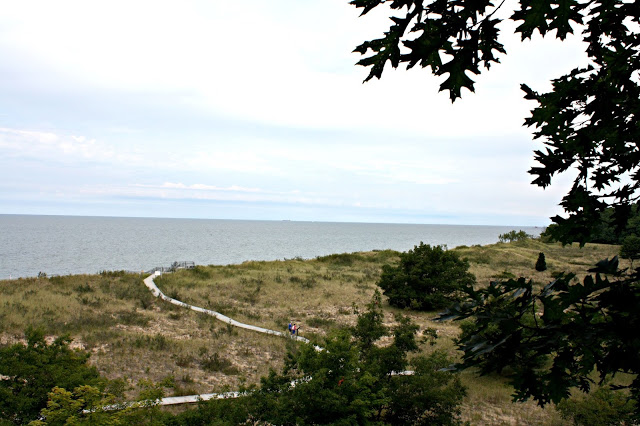 Lake Michigan from atop Rosy Mound