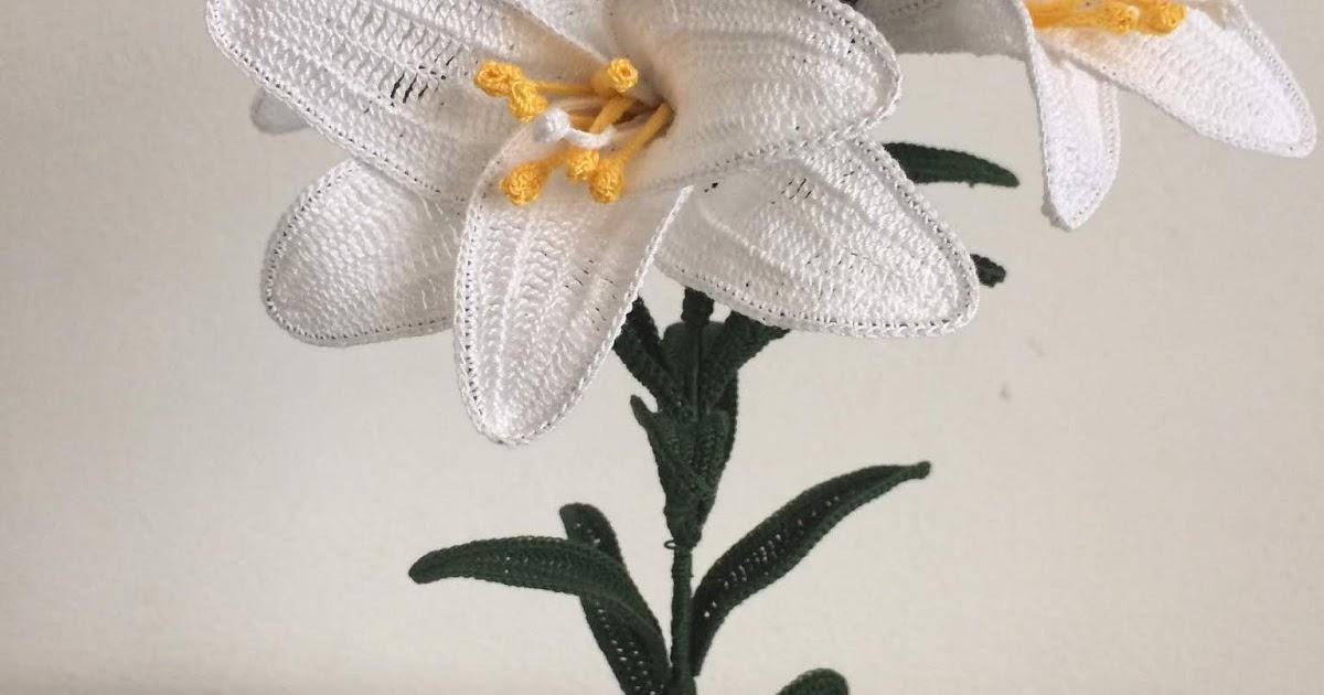 Il blog di sam how to crochet white lily for Il blog di sam piante grasse