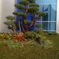 ini adalah sebuah contoh taman kantor yang telah kami buat
