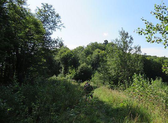 Ponad lasem widać wychodnię Ostrego Kamienia.