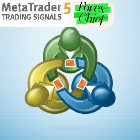 cara menjadi penyedia signal di mql5   Home Trader