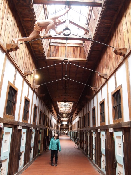 今日もどこかで☆てやんday: シベリア鉄道と網走の白鳥由栄