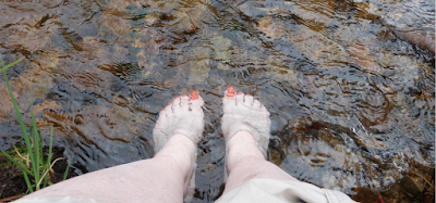 My two feet stand in a cold, mountain creek.
