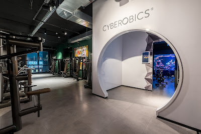 cyberotics mcfit