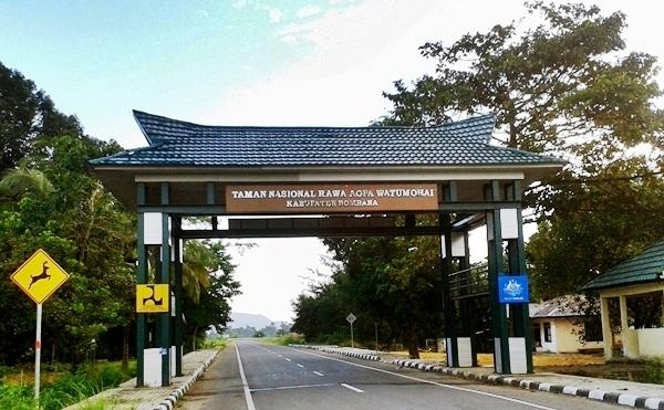 Wisata Alam Taman Nasional Rawa Aopa Watumohai Bombana