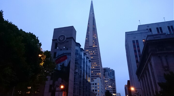 Transamerica Pyramid at night