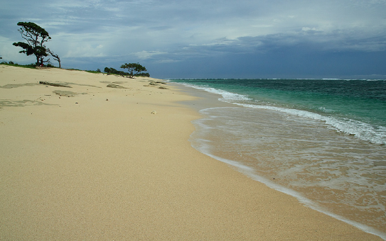 Cantiknya Pantai Pasir Putih di Sumba Barat