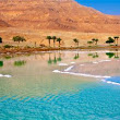 Dead Sea Region: trattamenti di bellezza unici