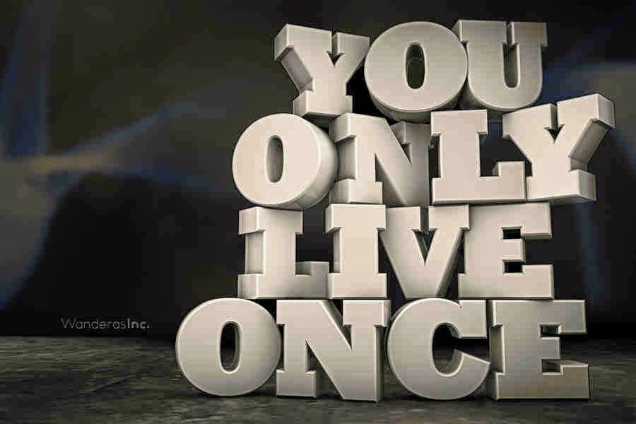 YOLO - You Only Live Once Essay