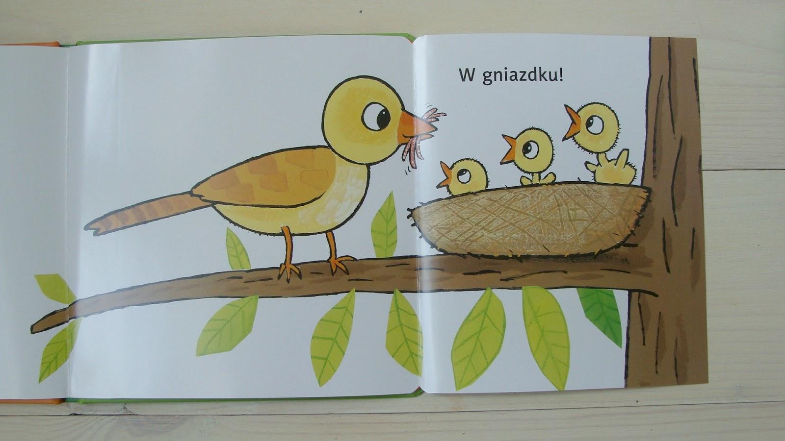 "Wydawnictwo Adamada - seria ""Odkryj..."" Guido van Genechten"
