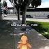 Pokémon Go, la app