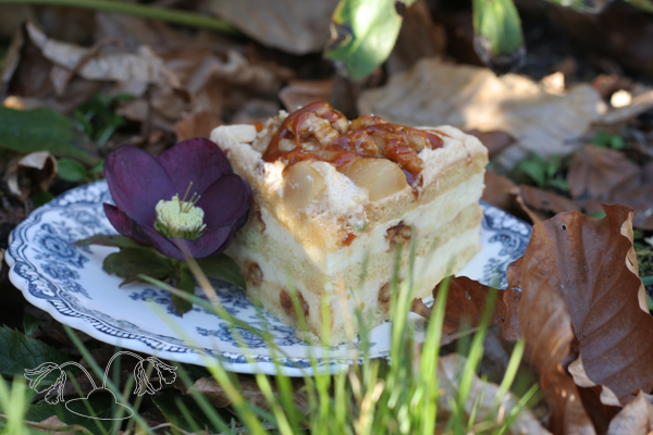 pear walnut cake recipe flowerhat