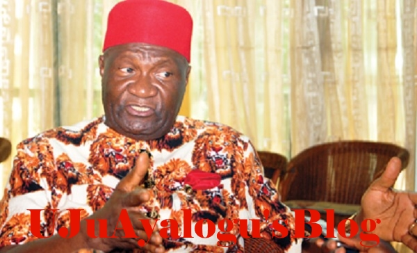 Any Igbo Who Wants To Kill Hausas In Igboland, Should Kill Governors First – Ohanaeze