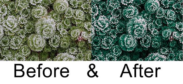 Winter, Lightroom, Photoshop, Fotografie, Eis, Katzenauge Photography
