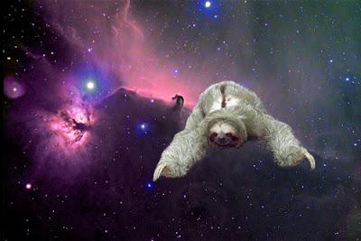 Truly Beats: Sloth Love*