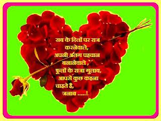 KIng of flowers roses