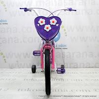 Sepeda Anak Erminio 2208 Dolphin 16 Inci