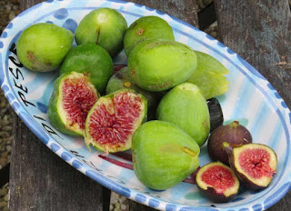 a plate of 'white' and black figs