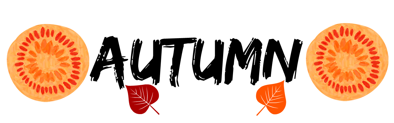 http://www.twinmummyyummy.co.uk/search/label/Autumn