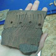 На Алтае найдена косторезная мастерская двухтысячелетней давности