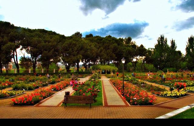 Rosaleda no Parque del Oeste em Madri