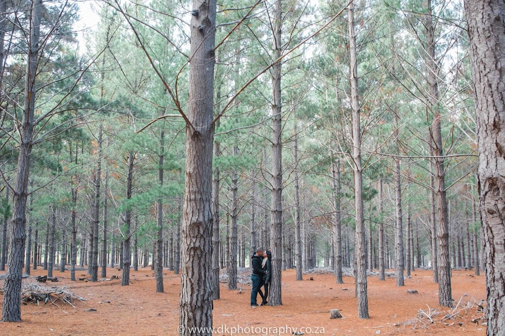 DK Photography CCD_9216 Preview ~ Lucy & Taschwill's Engagement Shoot in Tokai Forest  Cape Town Wedding photographer