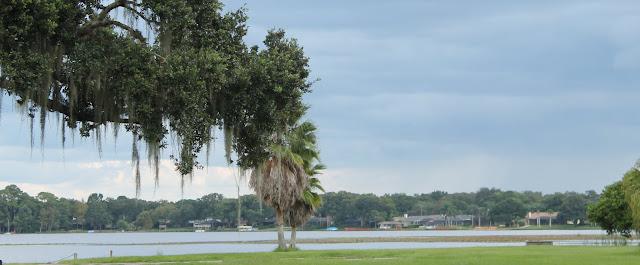 Lake Magdalene