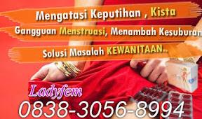 Toko Ladyfem di Surabaya