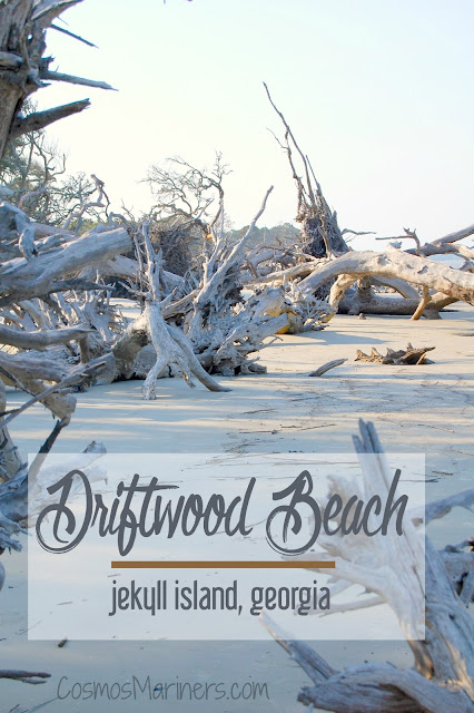 A Hauntingly Beautiful Spot at the Edge of the World: Driftwood Beach, Jekyll Island, Georgia | CosmosMariners.com