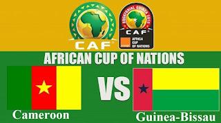اون لاين مشاهدة مباراة الكاميرون وغينيا بث مباشر 25-6-2019 كاس الامم الافريقية اليوم بدون تقطيع