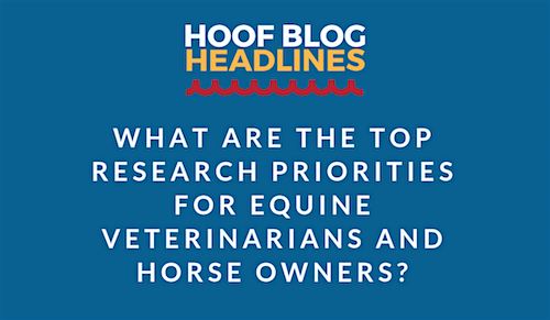 equine research survey results