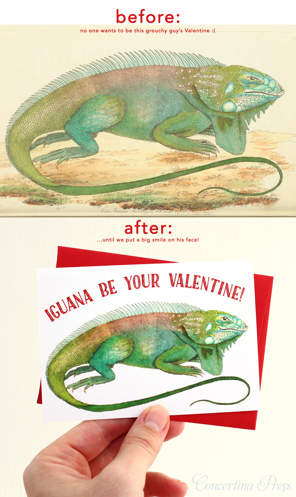 Iguana Be Your Valentine card from Concertina Press