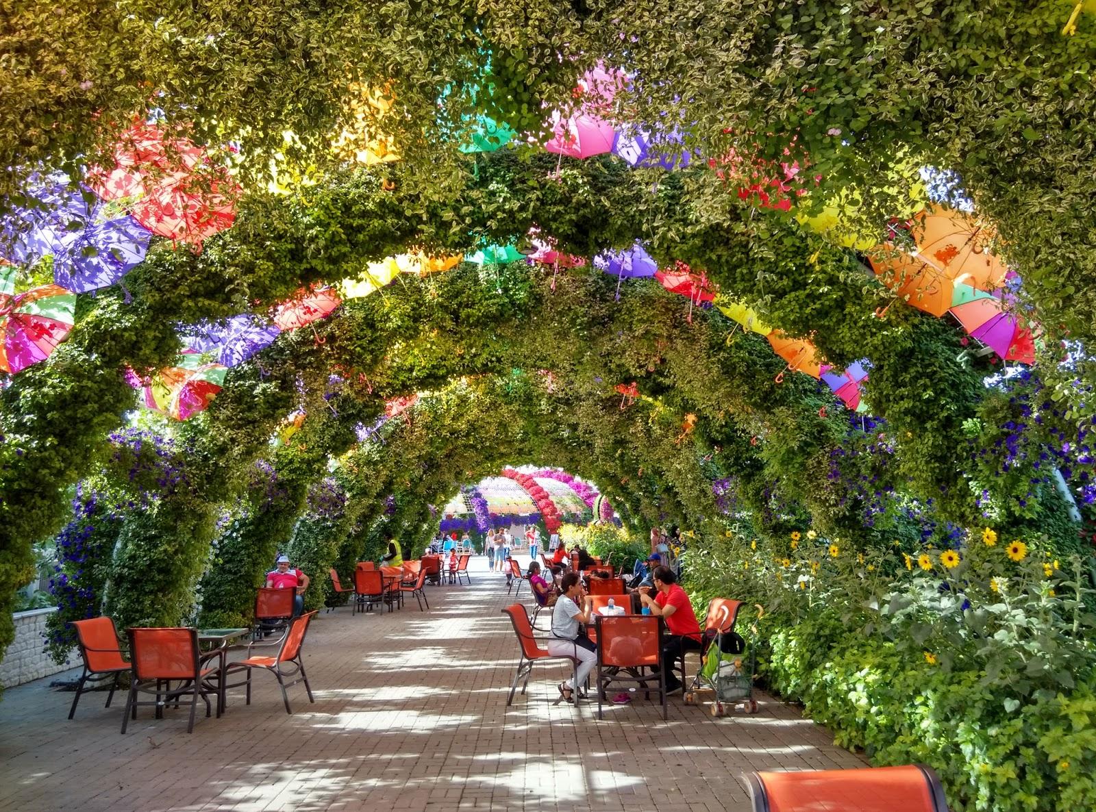 Miracle Gardens in Dubai