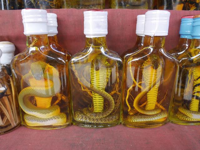 snake whisky - Luang Prabang, Laos