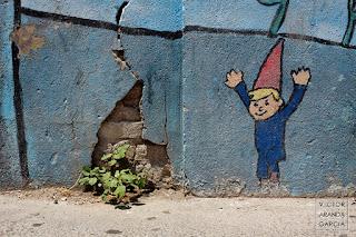 Fotografía de una planta creciendo en un trozo roto de un muro junto a un gnomo pintado