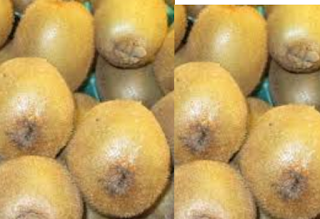 Kiwi Fruit Treat Skin diseases
