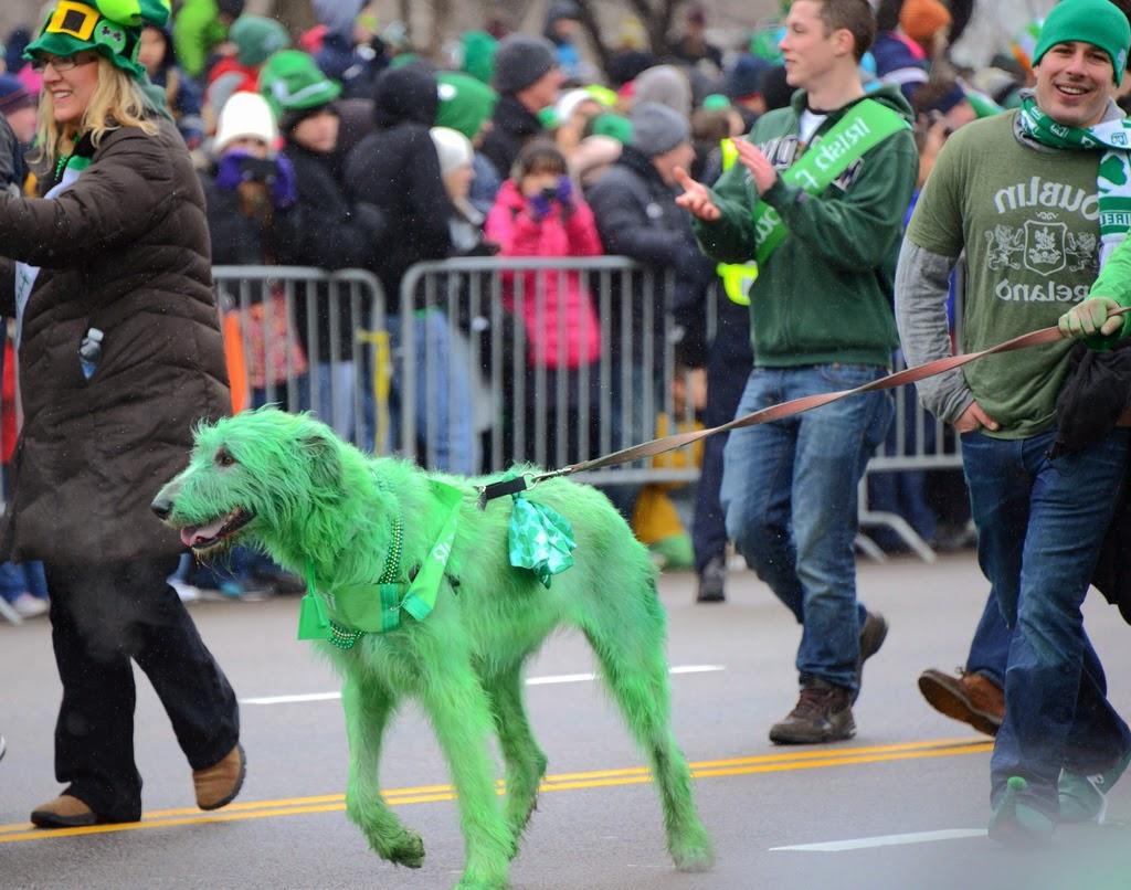 Parata di St. Patrick's Day a Dublino