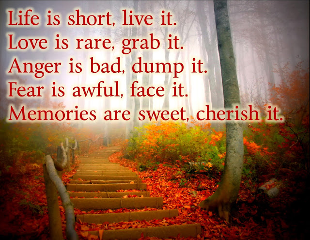 Jajackson Life Is Short Live It Love Is Rare Grab It