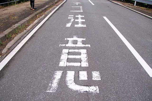 Japanese warning on pavement, Cat Crossing