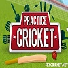 Online Practice cricket game