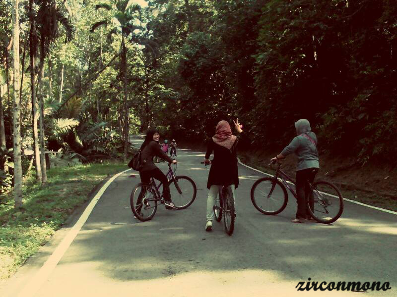 CYCLING - BKT CAHAYA