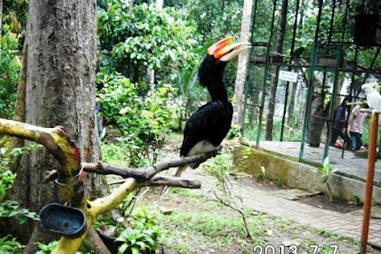 Lembah Hijau, Taman Wisata Alam dan Waterboom Terbesar Di Lampung