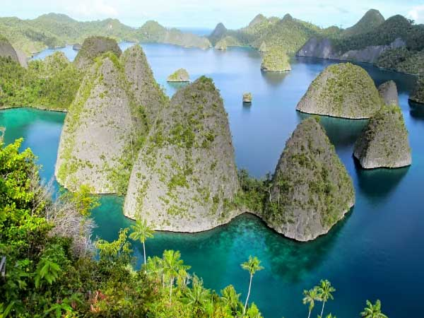 The Raja Ampat Papua, Most Beautiful Islands in Indonesia ...