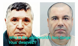 Who is the underworld's two dangerous' dwarves.?