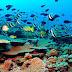 Pantai Padang Bai Bali Wisata Tersembunyi di Pantai Timur Bali