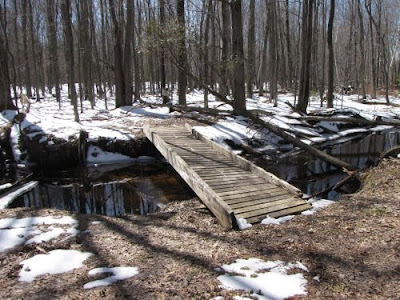 Cooper Creek bridge