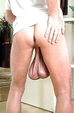 Big Balls And Dick 18
