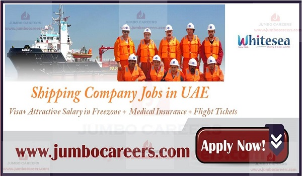 Latest Shipping Company Jobs in UAE Sharjah Freezone 2018-2019