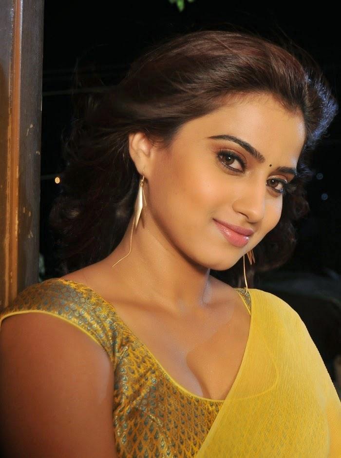 Sexy South Indian Actress Dimple Chopade Hot Photos -3734
