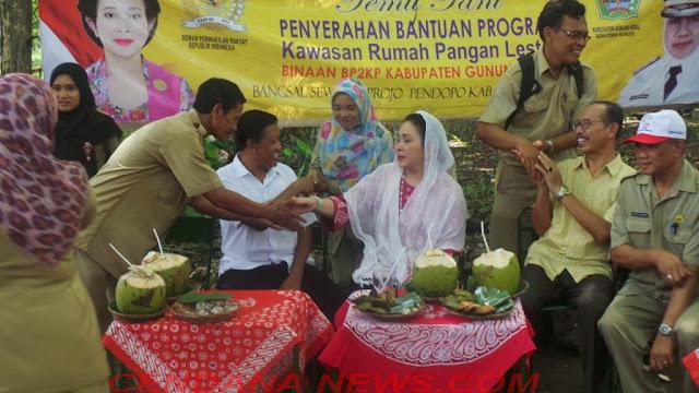 Wakil Ketua Komisi IV DPR RI, Siti Hediati Soeharto dalam Temu Tani Penyerahan Bantuan Program KRPL di Gunung Kidul (8/11/2016)